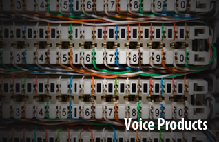 Voice Products